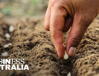 本周的 Business Australia 更新介绍了全面重启企业、加快退税以及利用政府刺激计划的所有关键信息